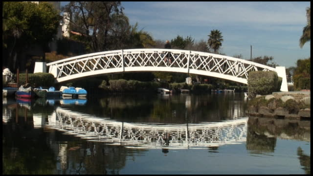 (HD1080i) Los Angeles: Venice Beach Reflected Bridge Crossed by Cyclist video