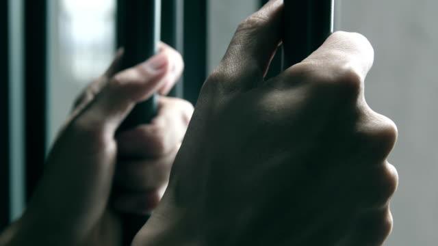 lose freedom - prigione video stock e b–roll