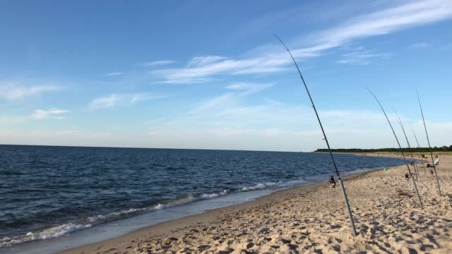 A lot of fishing rods by Baltic sea A lot of fishing rods by Baltic sea at sunny summer day baltic countries stock videos & royalty-free footage