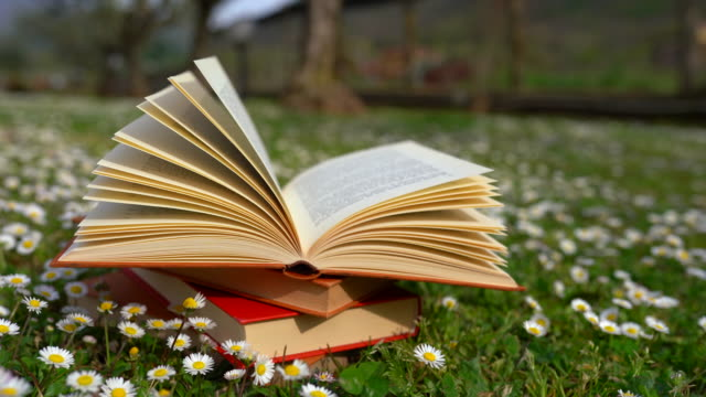 A lot of old books laying opened on the ground among the flowers. Waste paper outdoors. Antique books for relaxation. Knowledge concept
