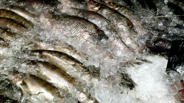 A lot of raw frozen fish crucian carp sprinkled with crushed ice on counter at fish market.