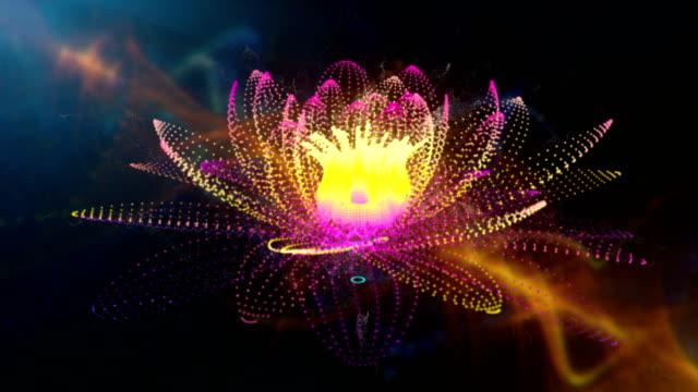 vídeos y material grabado en eventos de stock de lotus - mandala