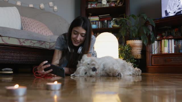 愛と楽しみ - イヌ科点の映像素材/bロール