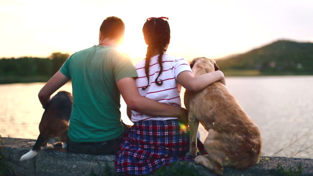 Love couple with their dogs on the lake video