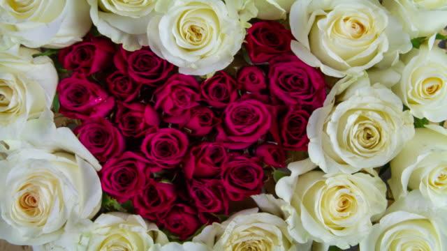 kärlek hjärta rose bakgrund - white roses bildbanksvideor och videomaterial från bakom kulisserna