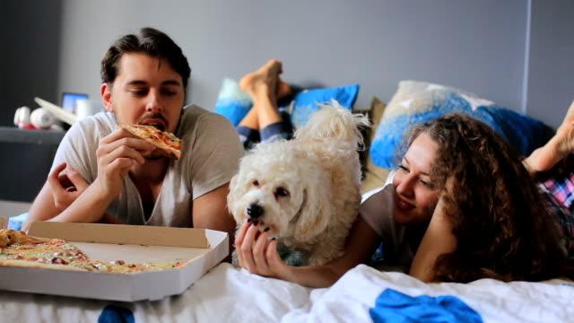 Resultado de imagen para poodle pizza