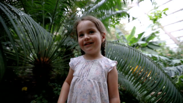 lovely child having fun at the botany zoo garden - solo una bambina femmina video stock e b–roll