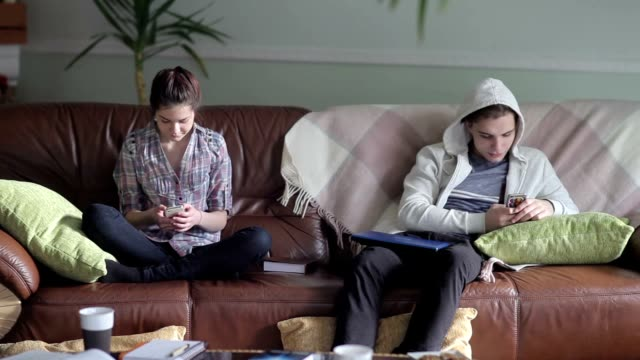 Lovely couple of students e-learning at home. video