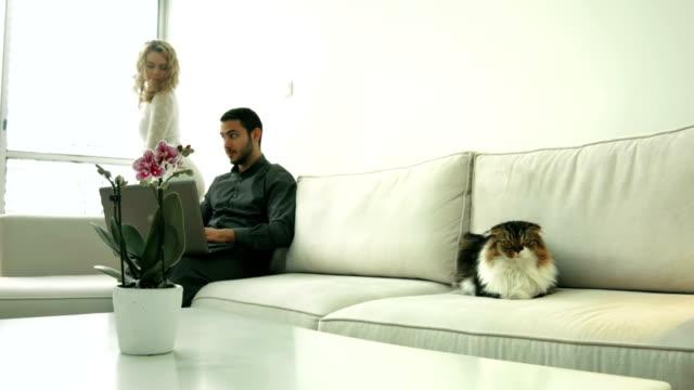 사랑스러움 커플입니다 앉은 소파, 노트북 및 자본가 - 이성 커플 스톡 비디오 및 b-롤 화면