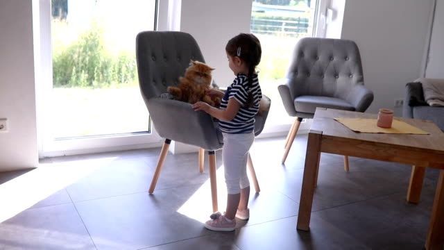 Lovely toddler chasing a cat while playing in the living room