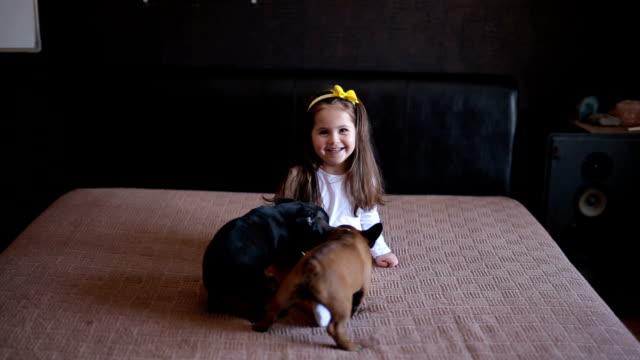 フランス ブルドッグと一緒にベッドで素敵な幼児 - イヌ科点の映像素材/bロール