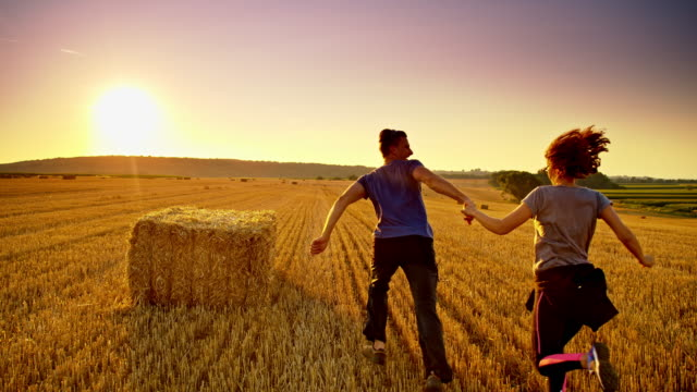 WS Loving couple running on a wheat field at sunset video