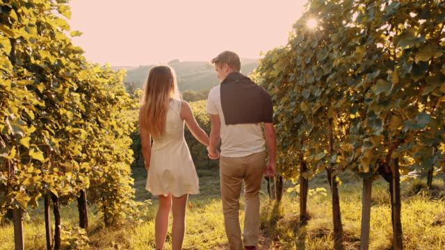 Loving couple walking through the vineyard video