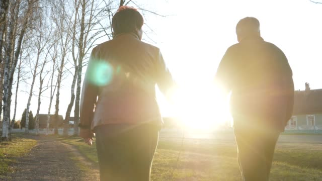 loving elderly couple walking in the park at sunset. nearby there is a road. a woman in a brown leather jacket. the man is dressed in a black sweater - top nero video stock e b–roll