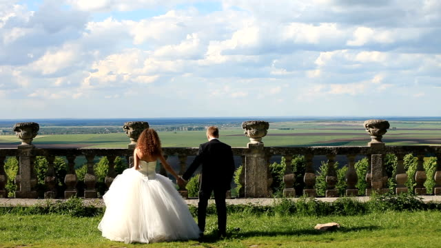 loving groom walks with beautiful bride on green lawn near old stone balustrade. magnificent blue sky with large clouds as background - balaustrata video stock e b–roll