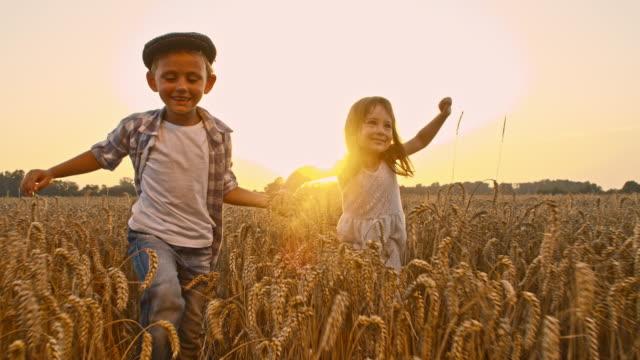 slo mo kärleksfull barn gå i fältet vete - hålla handen bildbanksvideor och videomaterial från bakom kulisserna
