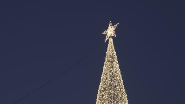 alacakaranlıkta koyu mavi gökyüzünde izole noel ışık ağacının düşük açı çekim - süslü püslü stok videoları ve detay görüntü çekimi