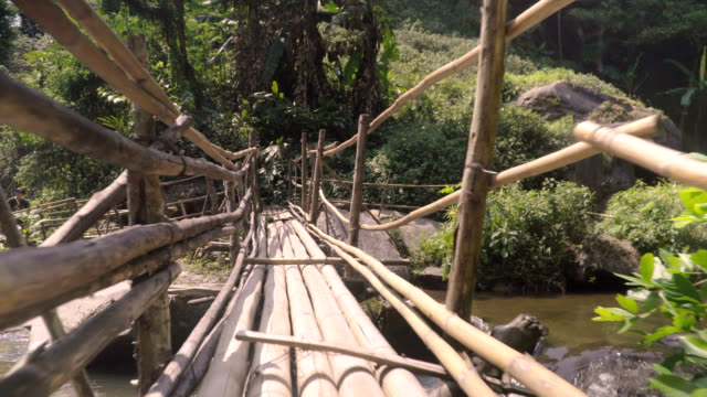 low angle view: bamboo made bridge video