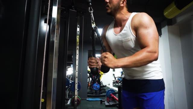 vídeos de stock e filmes b-roll de low angle view of bodybuilder doing arm exercise - músculo humano