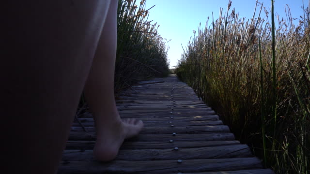 Low angle view of human's feet on nature walk pathway video