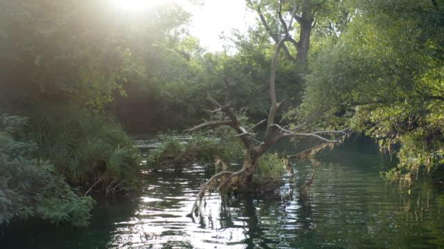 küçük bir kırsal nehir üzerinde düşük uçuş - sale stok videoları ve detay görüntü çekimi