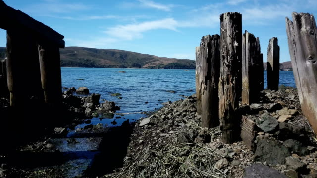 Low Fly Through Rotting Wooden Pier on Edge of Lake video