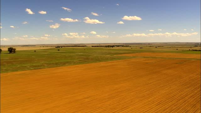 Low Over Fields  - Aerial View - Orange Free State,  Lejweleputswa District Municipality,  Matjhabeng,  South Africa video