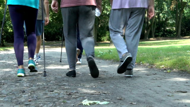 Low section of fit senior people walking in park video
