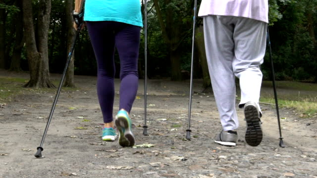 Low section of senior women walking on road in park Low section of fit senior women walking together on dirt road. Tracking shot of females are holding hiking poles in park. They are wearing sportswear. stick plant part stock videos & royalty-free footage