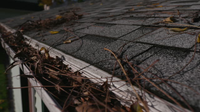 Lowering From Roof Shingles to Clogged Gutter a lowering shot from the grey shingles on a garage roof to reveal a clogged gutter with leaves during the fall season rooftop stock videos & royalty-free footage