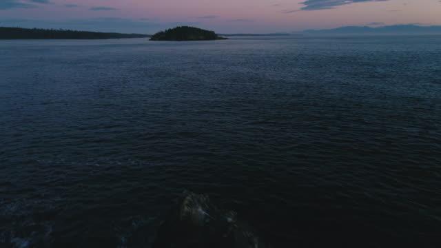 ピンクの空を持つロッキーショアの波の低照度オーシャン空中 ビデオ