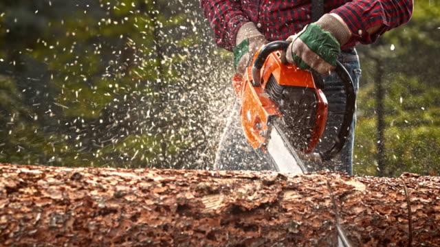 slo mo lumberjack bucking a tree with chainsaw - motosega video stock e b–roll