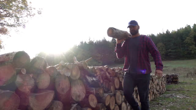 stockvideo's en b-roll-footage met houthakker uitvoering hout log - wood