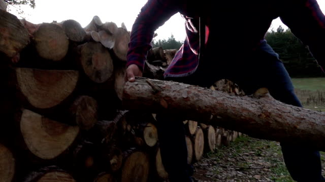 Lumberjack carrying wood log video