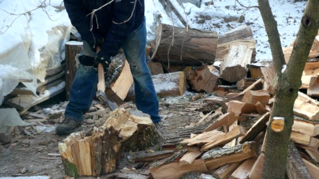 Lumberjack Chopping Wood In The Winter video
