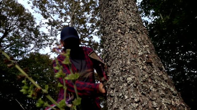 Lumberjack Chopping Wood Log video