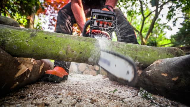 チェーンソーで木を切る木材ジャック - スローモーション - 薪点の映像素材/bロール
