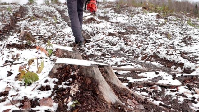 Lumberjack goes to work - video