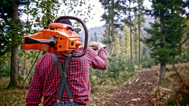 SLO MO DS Lumberjack walking in forest with chainsaw video