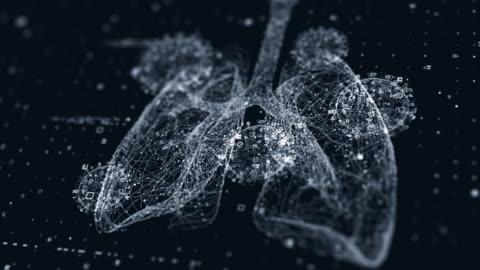 vídeos de stock e filmes b-roll de lungs scan with virus - corpo humano