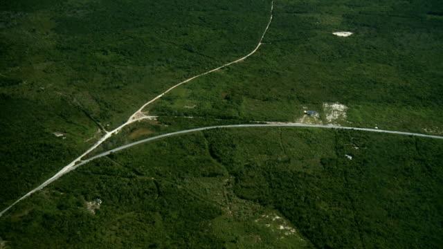 Lush Landscape Aerial video