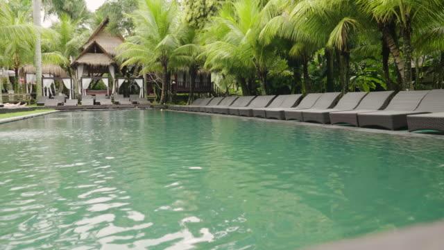 スイミングプール、サンベッド付きの高級ホテルで、ヤシの木などの緑と自然に囲まれてリラックスできます。 - ヴィラ点の映像素材/bロール