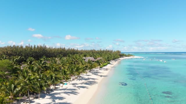 luxury tropical beach in mauritius. beach with palms and blue ocean. aerial view - isole mauritius video stock e b–roll