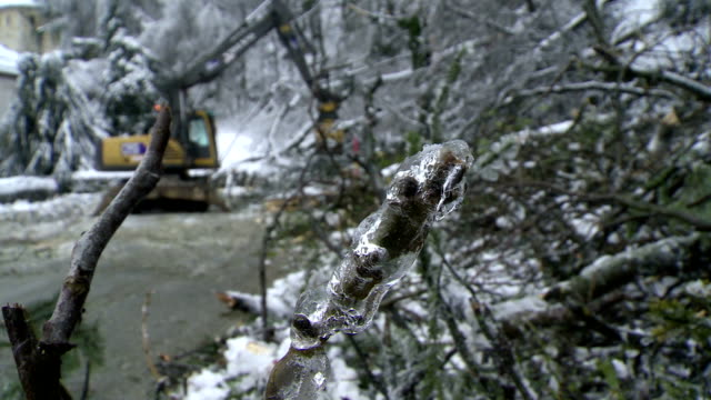 Machinery Cleaning Road Of Fallen Trees HD1080p: Heavy machinery removing broken trees and branches fell on a country road during the sleet storm. Slovenia. Europe branch plant part stock videos & royalty-free footage