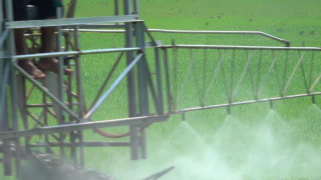 machinery spraying pesticide in rice field - insetticida video stock e b–roll