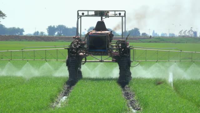 machinery spraying pesticide in rice field - fertilizzante video stock e b–roll