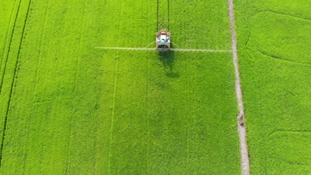 machinery spraying pesticides on a rice field - fertilizzante video stock e b–roll