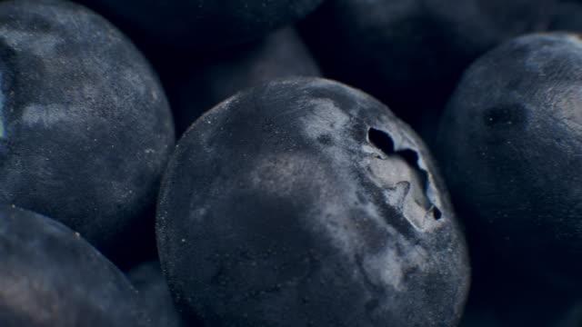 Macro Dolly Shot of Fresh Blueberries Grapes Fruit