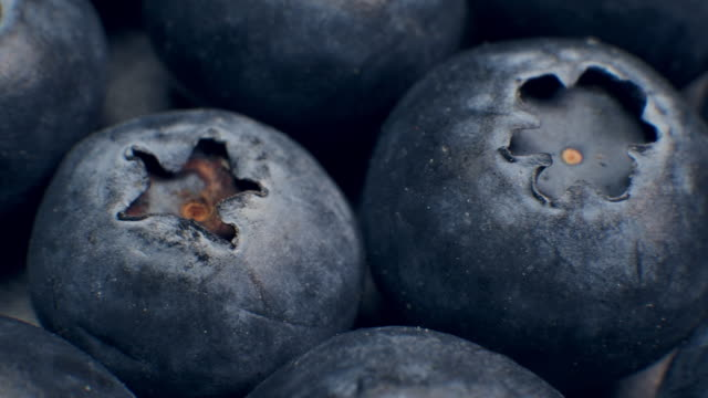 Macro Dolly Shot of Fresh Blueberries Grapes Fruit