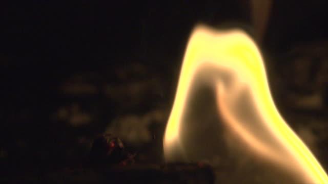 Macro flame on a burning log video
